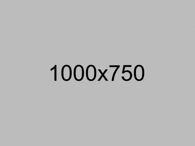 shutterstock_103887620